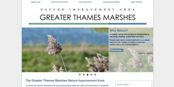 Greater Thames Marshes brochure website front page